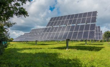 A megújuló energiaforrásból termelt villamos energia 59 százalékát nap, 22 százalékát biomassza, 11 százalékát szél, 4 százalékát biogáz, 2 százalékát víz, és ugyancsak 2 százalékát a kommunális hullad